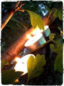 lampions1_Fotor